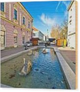 Town Of Bjelovar Square Fountain Wood Print