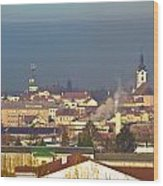 Town Of Bjelovar Winter Skyline Wood Print