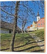 Town Of Varazdinske Toplice Center Park Wood Print