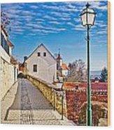 Town Of Varazdinske Toplice Walkway Wood Print