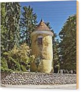 Town Of Vrbovec Historic Park Tower Wood Print