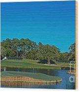 Tpc Sawgrass Island Green Wood Print