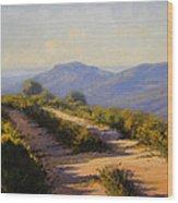 Track Along Walls Ledge Blackheath Wood Print by Graham Gercken