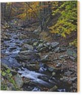 Tracking Color - Big Hunting Creek Catoctin Mountain Park Maryland Autumn Afternoon Wood Print