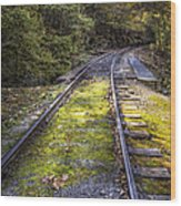Tracks Along The River Wood Print