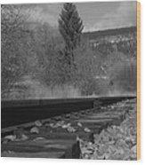 Tracks And Trees Wood Print