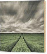 Tracks Wood Print by Dave Bowman