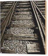 Tracks Into Tracks - 2 Wood Print