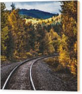 Tracks Through The Mountains  Wood Print