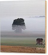 Tractor In Field Low Fog With Tree And Harvester Wood Print