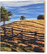 Tractor Trails - Blue Ridge Parkway Wood Print by Dan Carmichael