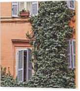 Traditional House Rome Italy Wood Print