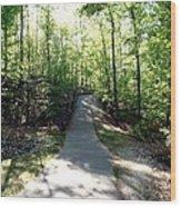 Trail Around Lake Johnson Wood Print