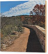 Trail At Reimer's Ranch Wood Print