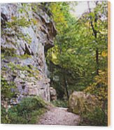 Trail Beside The Cliff Wildcat Den State Park Wood Print