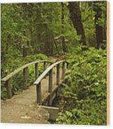 Trail Bridge Toketee 1 Wood Print