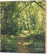 Trail Of Hope II Wood Print