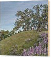 Trail Of Lupine Wood Print