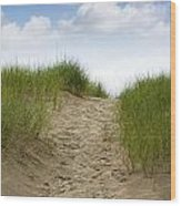 Trail Over The Dune To The Summer Beach Wood Print