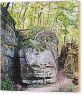 Trail Through The Rocks Wildcat Den State Park Wood Print