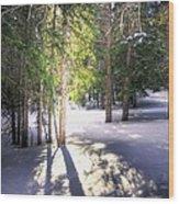 Trail To Bear Lake 4490 Wood Print