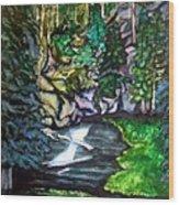 Trail To Broke-off Wood Print