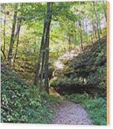 Trail To Devil's Punch Bowl Wildcat Den Wood Print
