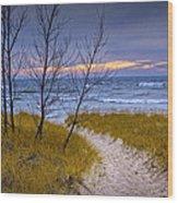 Trail To The Beach Wood Print