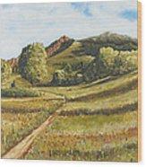 Trail To The Peak Wood Print