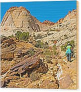 Trail Up To The Tanks From Capitol Gorge Pioneer Trail In Capitol Reef National Park-utah Wood Print