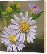 Trail Wildflowers Wood Print