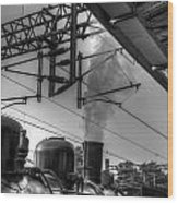 Train At Miaoli Station Wood Print