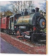 Train At Olmsted Falls - 1 Wood Print