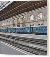 Train At Station Platform Budapest Hungary Wood Print