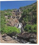 Train Crossing Dudhsagar Falls Wood Print