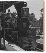 Train Ride Magic Kingdom Black And White Wood Print