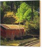 Train Shed Wood Print