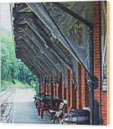 Train Station Wood Print
