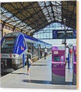 Train Station Marseille France Wood Print