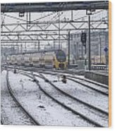 Train Station Zwolle In Winter Netherlands Wood Print
