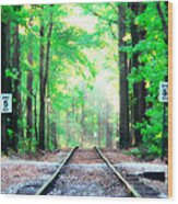 Train Tracks In Forest Wood Print