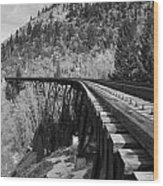 Train Trestle 1 Wood Print
