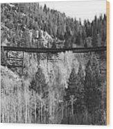 Train Trestle 4 Wood Print