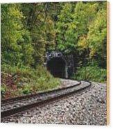 Train Tunnel Wood Print