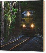 Rails Through The Wilderness Wood Print