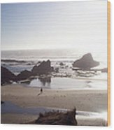 Tranquil Beach Wood Print