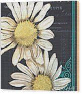 Tranquil Daisy 1 Wood Print