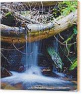 Tranquil Falls Wood Print