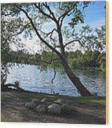 Tranquil Lake Wood Print
