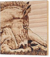 Tranquil Wood Print by Paper Horses Jacquelynn Adamek